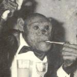 人とチンパンジーの混血種「オリバー」