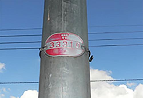 現場近くの電柱