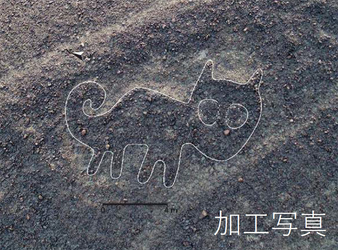 ネコ科動物の地上絵